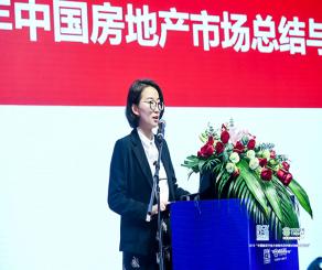 于小雨:2018年中國房地產市場總結與2019年展望