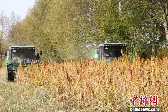 中联重科高端拖拉机生产线正式启动 推动国产农机制造新高度
